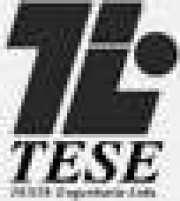 TESE ENGENHARIA LTDA (EDIFÍCIO VERSAILLES)