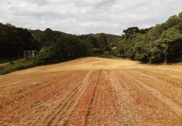 Zona Rural, Chácara / sítio à venda, 36000 m2