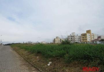 Areias, Terreno comercial para alugar, 360 m2