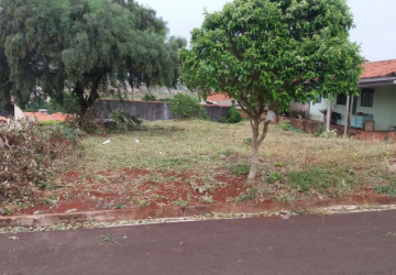 Terreno Comercial Nivelado Av Vinícios de Morais Em Frente Muro UEL Londrina