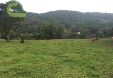 Área à venda, 6468 m² por R$ 1.100.000 - Santa Lidia - Penha/SC