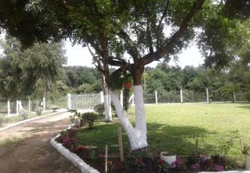Colônia Marcelino, Chácara / sítio à venda, 9000 m2