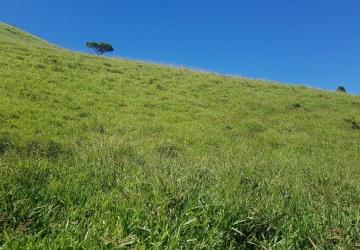 Vendo terreno de 114.757 m² na zona rural de Córrego do Bom Jesus-MG