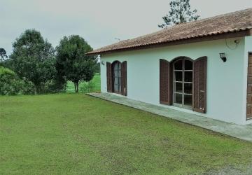 Campo Largo da Roseira, Terreno comercial à venda, 10432 m2