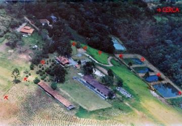 Rancho Alegre, Chácara / sítio à venda, 9900 m2