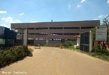 Vila Martins, Barracão / Galpão / Depósito para alugar, 10000 m2