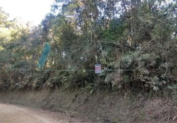 Campininha, Chácara / sítio à venda, 4000 m2
