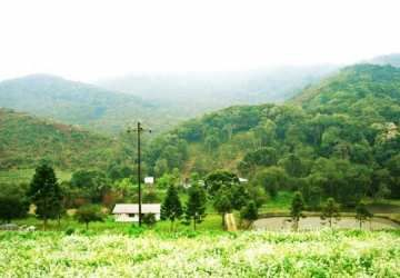 Serrinha, Chácara / sítio à venda, 406 m2