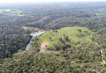 Tijucas do Sul, Fazenda à venda, 317221 m2
